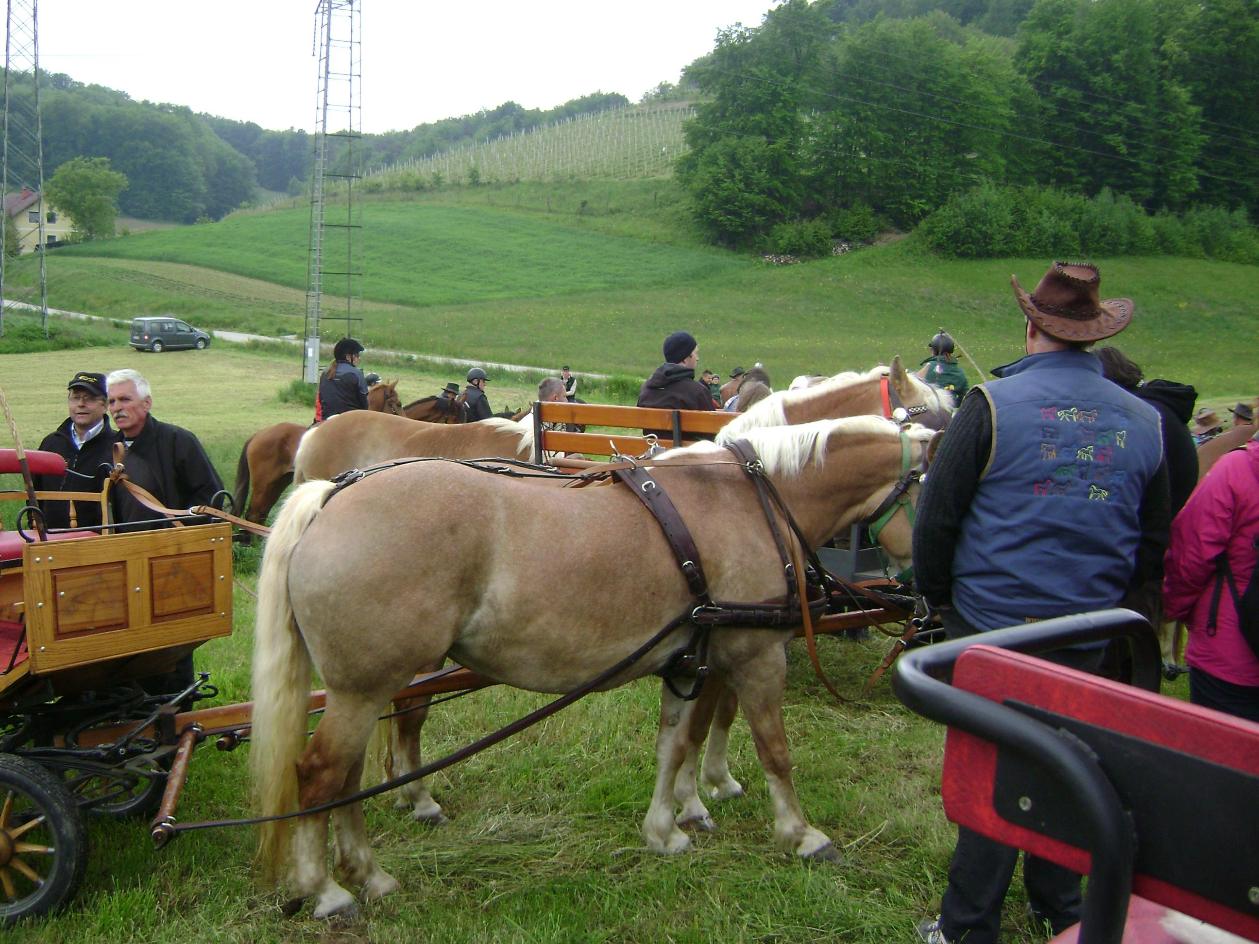 Blagoslov konj pri Lesjaku v Stanovnu