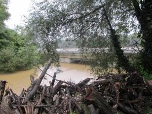poplave_Lesnica