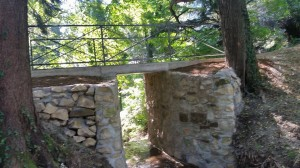 slika_most v parku