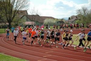 Na 14. ormoškem malem maratonu je sodelovalo 256 tekmovalk in tekmovalcev. Foto: HOST