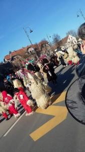 slika_karneval_8