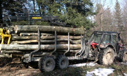 Tudi les kradejo (Kronologija pomembnejših dogodkov na območju Policijske postaje  Ormož v minulem dnevu)