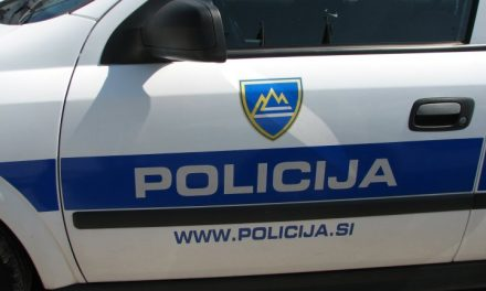 Zaparkirala ga je (Kronologija pomembnejših dogodkov na območju Policijske postaje  Ormož)