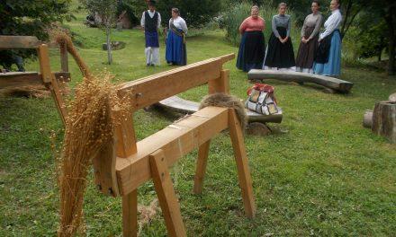 Z današnjega spravila lanu pri teti Marti v Cerovcu Stanka Vraza (KS Ivanjkovci):