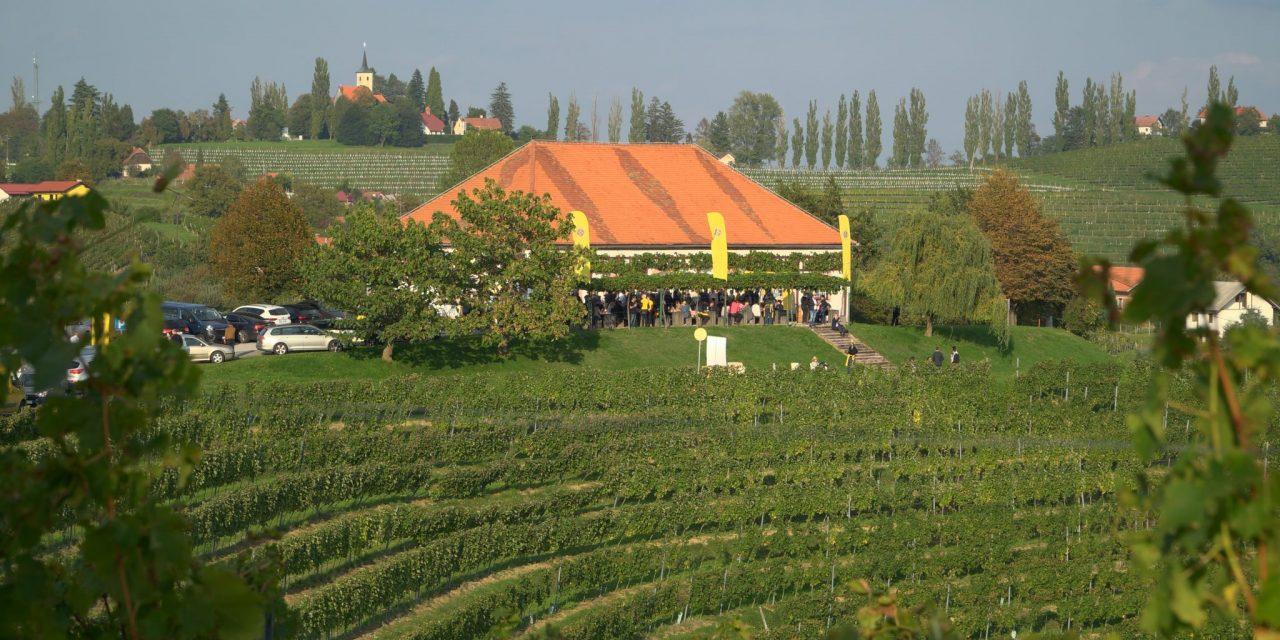 Družba Puklavec Family Wines s prijatelji proslavila zaključek trgatve