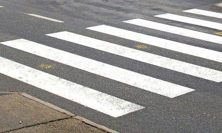 Kdo je trčil v pešca? (Kronologija pomembnejših dogodkov na območju Policijske postaje  Ormož)