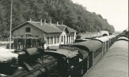 """Razstava """"Z vlakom čez mejo/Vlakom preko granice"""" tudi v Ormožu"""