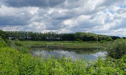 Ob Dnevu turizma odprli razstavo »Reka Drava, darilo za vse generacije«