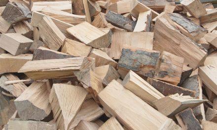 Poskrbeli za drva… (Kronologija pomembnejših dogodkov na območju Policijske postaje  Ormož)