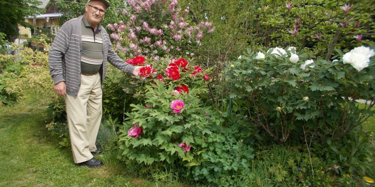 Na obisku pri vrtoljubcu Alojzu Škrjancu na Hardeku