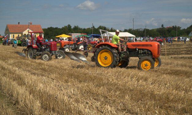Na tekmovanju v oranju s starodobnimi traktorji na Krčevini je tekmovalo kar 23 oračev